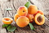 Apricots with leaves — Stock fotografie