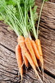 Carrots with leaves — Stock Photo