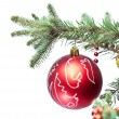 Stock Photo: Christmas ball on fir branches.