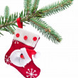 Christmas sock with Santa Claus on on fir branch. — Stock Photo