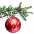 Christmas ball on fir branches. Isolated on white. — Stock Photo