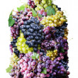 Bottle of wine made from grapes. - Stock Photo