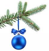 Christmas ball on fir branches. — Stock Photo