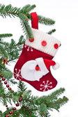 Christmas sock with Santa Claus on on fir branch. — Stockfoto