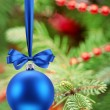 Christmas ball on fir branches. — Stock Photo #13376472