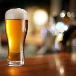 Glass of light beer. — Stock Photo