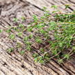 Stock Photo: Thyme herb.