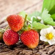 Strawberries with leaves - Stock Photo