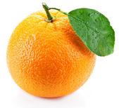 Naranja con hojas sobre un fondo blanco. — Foto de Stock
