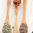 Variety of spices in the spoons. — Stock Photo #18690957