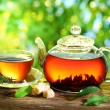 Cup of tea and teapot. — Stock Photo #19459001
