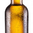 Bottle of beer. — Stock Photo #22463997