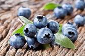 Blueberries with leaves — Stockfoto