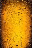 Gouttes sur une bouteille de bière. — Photo