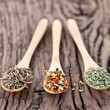 Variety of spices in the spoons. — Stock Photo #22750265