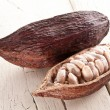 Stock Photo: Cocoa pod