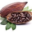 Cocoa pod — Stock Photo #22751365