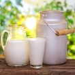Milk in various dishes. — Stock Photo