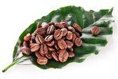 Kávová zrna na list. — Stock fotografie
