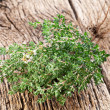 Stock Photo: Thyme herb