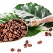 Coffee beans on scoop and leaves. - Stock Photo