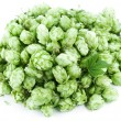 Royalty-Free Stock Photo: Hops on a white background.