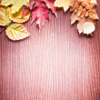 Autumn leaves. — Stock Photo #27689971