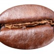 Coffee bean. — Stock Photo