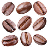Coffee beans. — Stock Photo