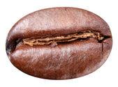 Coffee bean. — Stock Photo