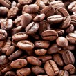 Coffee beans. — Stock Photo #30872045