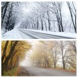 Winter and Autumn panorama of the forest road. — ストック写真