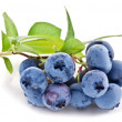 Blueberries with leaves on a white background. — Stockfoto