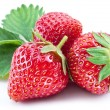 Strawberries with leaf isolated on a white. — Stock Photo
