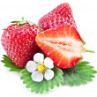 Strawberries with leaves and flower isolated on a white. — Stock Photo
