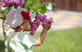 Baby girl sniffing lilac. — Stock Photo