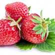Strawberries with leaves isolated on a white. — Stock Photo