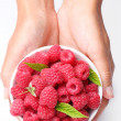 Crockery with raspberries in woman hands. — Stok fotoğraf