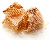 Honungskakor. — Stockfoto