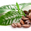 Roasted coffee beans and leaves. — Stock Photo
