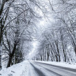 Country snow road. — Stock Photo