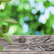 Old wooden table with green foliage background — Stok fotoğraf