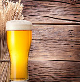 Ears of wheat & beer glass. — Stock Photo