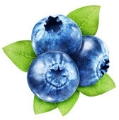 Blueberries with leaves on a white background. — Stock Photo