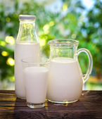 Milk in various dishes. — Foto Stock