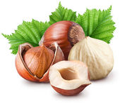 Hazelnuts. — Stock Photo