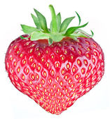 One rich strawberry fruit in the form of heart. — Stock Photo