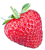 One rich strawberry fruit. — Stock Photo