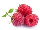 Three raspberries isolated on a white. — Stock Photo