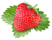 One rich strawberry fruit with leaves. — Stockfoto